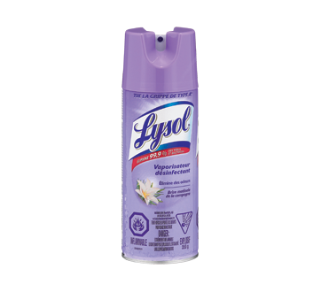 Disinfectant spray, 350 g, Early Morning Breeze