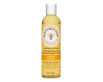 https://www.jeancoutu.com/catalog-images/091447/search-thumb/burts-bees-burts-bees-baby-shampooing-et-gel-nettoyant-235-ml.png