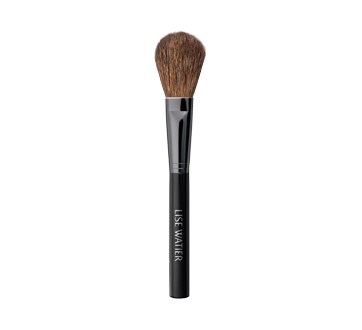 Blush Brush, 1 unit