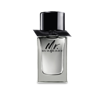 Mr. Burberry Eau de Toilette for Men, 100 ml
