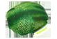 Thumbnail of product manimo - Full Moon Ball, 1 unit, Green