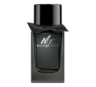 Mr. Burberry Eau de Parfum, 100 ml