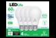 Thumbnail of product Globe Electric - LED Bulbs 60W A19 , 4 units, Daylight