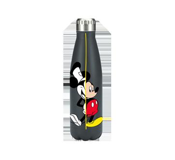 Mickey Stainless Steel Bottle - 750 ml, 1 unit