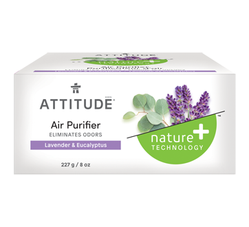 Natural Air Purifier, 227 g, Eucalyptus & Lavender