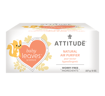 Baby Leaves Natural Air Purifier, 227 g, Pear Nectar