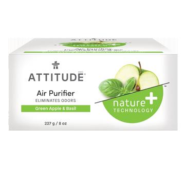 Natural Air Purifier, 227 g, Green Apple & Basil