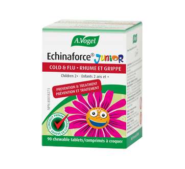 Image of product A. Vogel - Echinaforce Junior, 90 units