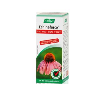 Image of product A. Vogel - Echinaforce Cold & Flu Treatment, 50 ml