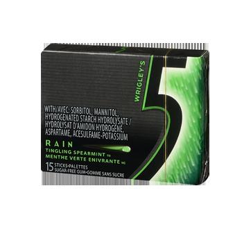 Rain Gum, 15 pieces, Tingling Spearmint