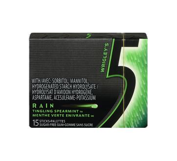 Image 3 of product 5 - Rain Gum, 15 pieces, Tingling Spearmint