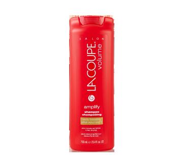 Volume Amplify Body Boosting Shampoo, 750 ml