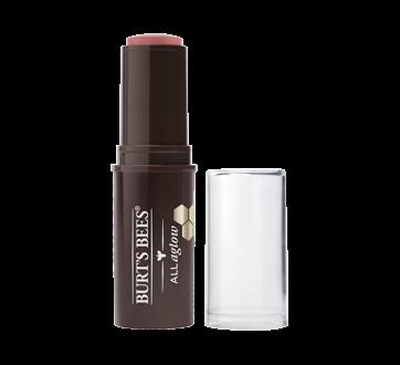 Image 2 du produit Burt's Bees - Bâtonnet pour lèvres et pommettes teint rayonnant naturel à 100%, 9.07 g Suez Sands