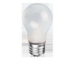 Image du produit Globe Electric - Ampoule, 1 unité, givrée
