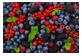 Vignette 4 du produit Nicorette - Nicorette Vapoéclair, 1 unité, 1 mg, baie fraîche