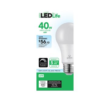 Ampoule DEL A19 40 W, 1 unité