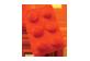 Vignette du produit Groupe Ricochet - Peluche brique, 1 unité, rouge