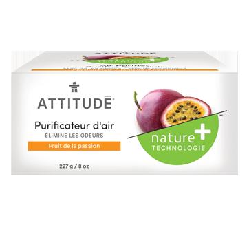 Baby Leaves purificateur d'air naturel, 227 g, fruit de la passion