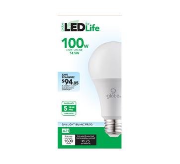 Ampoule DEL 100W A21, 1 unité, blanc froid