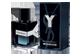 Vignette du produit Yves Saint Laurent - Y eau de parfum, 60 ml