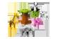 Vignette 2 du produit Lego - Les bébés animaux, 1 unité