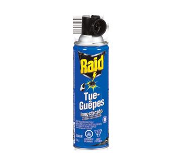 Insecticide tue-guêpes, 1 unité