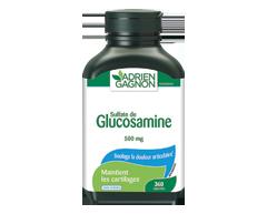 Image du produit Adrien Gagnon - Glucosamine 500 mg, 360 unités