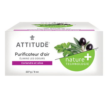 Purificateur d'air naturel, 227 g, coriandre et olive