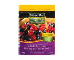 Image du produit Europe's Best - Mélange de 4 fruits, 600 g