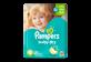 Vignette du produit Pampers - Couches Baby Dry, 21 unités, taille 6, format jumbo