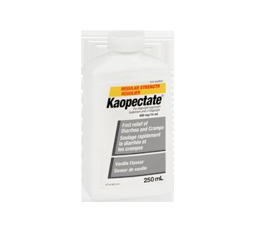Image 2 du produit Kaopectate - Suspension Kaopectate régulier, 250 ml, vanille