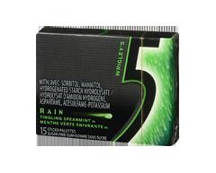 Image du produit 5 - Rain gomme, 15 morceaux, menthe verte enivrante
