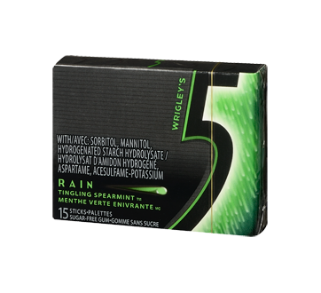 Rain gomme, 15 morceaux, menthe verte enivrante