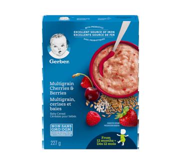 Gerber 5 céréales, 227 g, cerises et baies