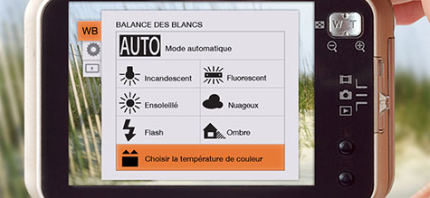 How to manually adjust the white balance