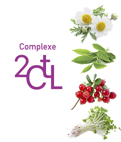 The 2CTL Complex
