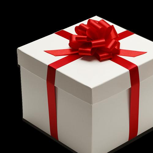 4 conseils pour capturer l'ouverture des cadeaux de Noël