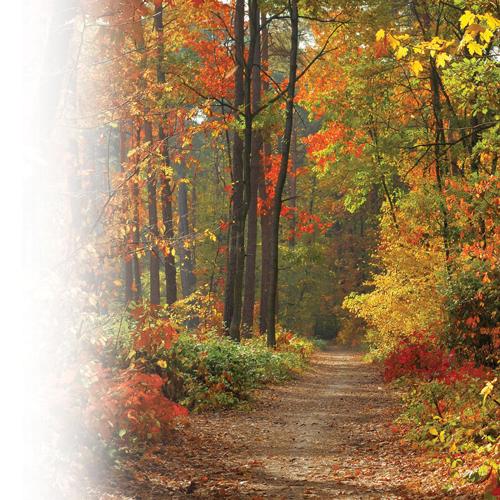 10 beaux endroits pour photographier l'automne