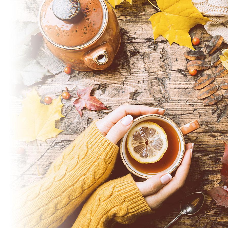 Des photos d'automne pleines de couleurs et de lumière